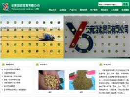 云南沿边贸易有限公司